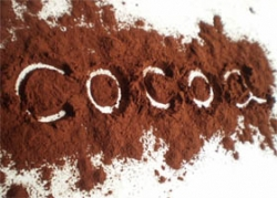 Cocoa Powder Alkalized 20-22% DeZaan 25kg
